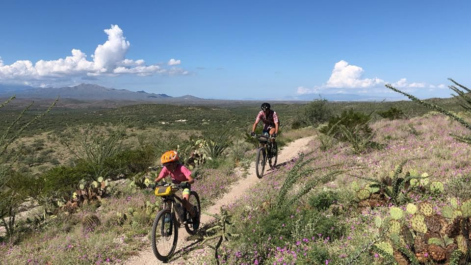 Sonoran Desert Mountain Bicyclists - SDMB In the Know